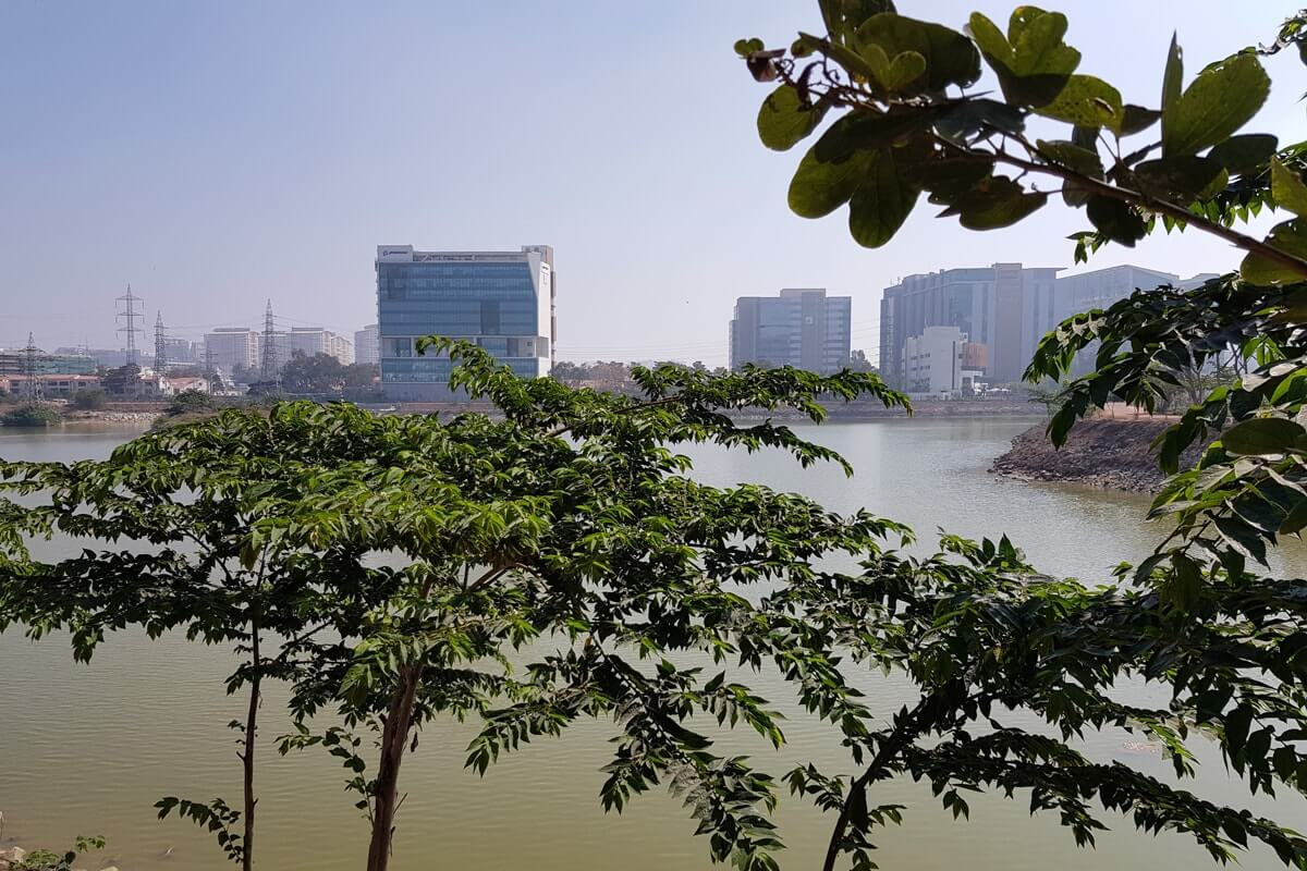 blog-Bangalore-lake-trees